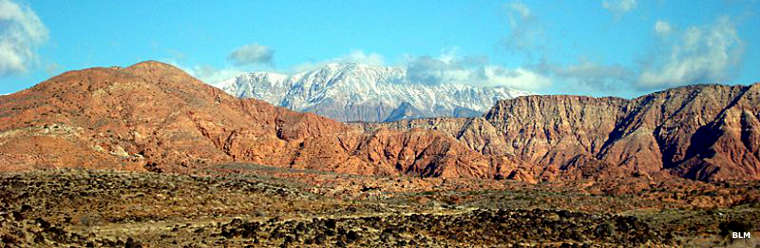 Cottonwood Canyon Wilderness | National Wilderness Areas